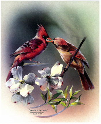 Bird Painting ~ Animal Paintings ~ Wildlife Art