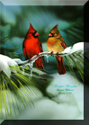 bird paintings,birds, Wildlife Paintings ~ Wildlife Art ~ Animal Paintings & Animal Artwork~ Paintings of Wildlife ~ Smoky Mountains Tennessee wolves ,tigers, deer ,elk,spencer williams, oil paintings, wildlife paintings, animals, Spencer Williams