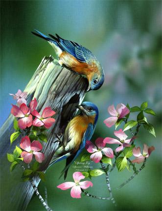 Bird Paintings, animal & wildlife paintings, paintings of animals ...