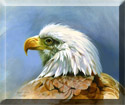 eagle portrait painting