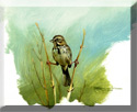 perched sparrow painting