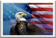 god bless america, flag, eagle, god bless america eagle flag, american flag and eagle flag