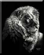 king of kings scratchboard