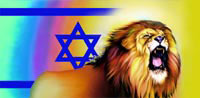 praise and worhsip flag, silk flag, praise flag, worship flag, roaring lion star of david flag